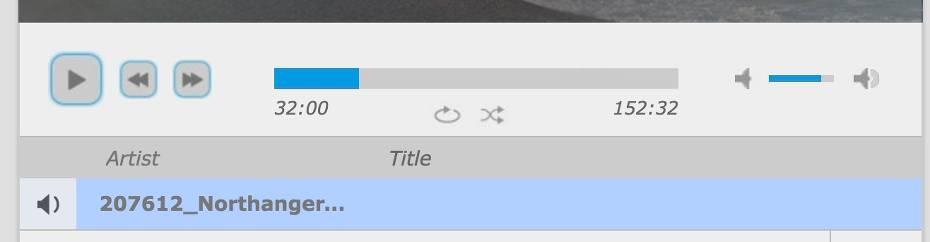 Music Player Media Controls